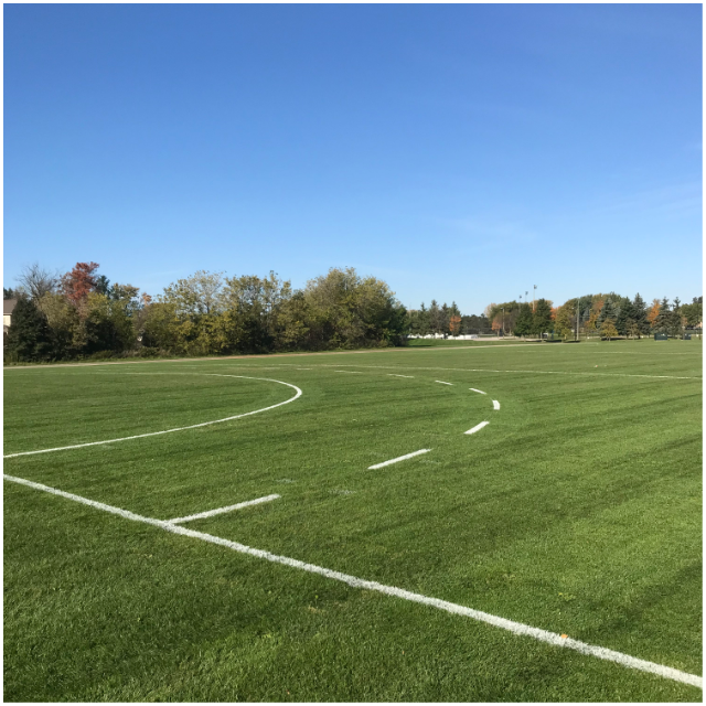 custom-lining-sports-field-line-painting